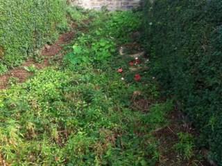 gardenarchive